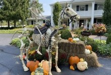 Хелловін (Halloween) - історія виникнення та символіка Дня всіх святих