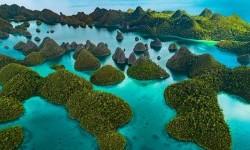 Нова Гвінея - найбільший острів тихого океану