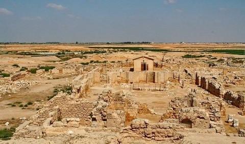 Конукрентна боротьба між грецьким Навратісом та єгипетською Александрією