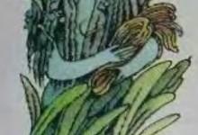 Болотяниця (вирвиця, лопатниця