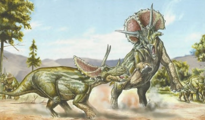 Цератопси, анкілозаври і пахіцефалозаври