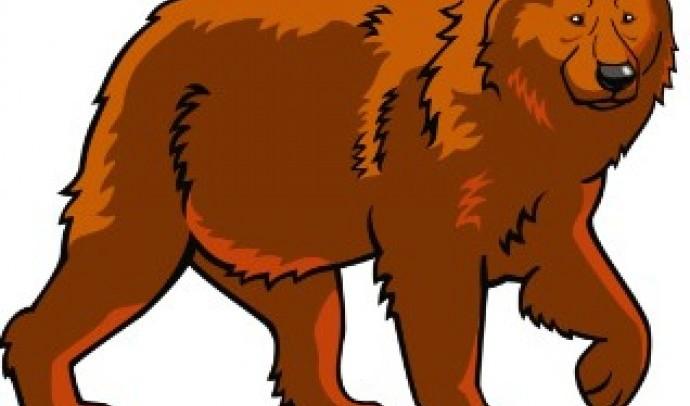 Ведмідь у світогляді українців