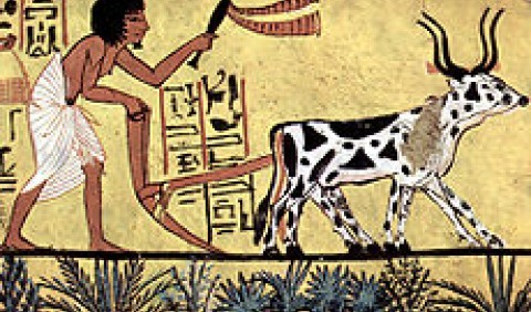 Види господарств у Давньому Єгипті