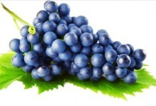 Виноград у світогляді українців