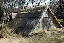 Господарські будівлі традиційного українського селянського двору