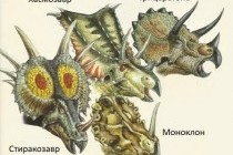 Коміри цератопсів