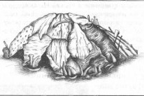Льодовикова доба в історії людства