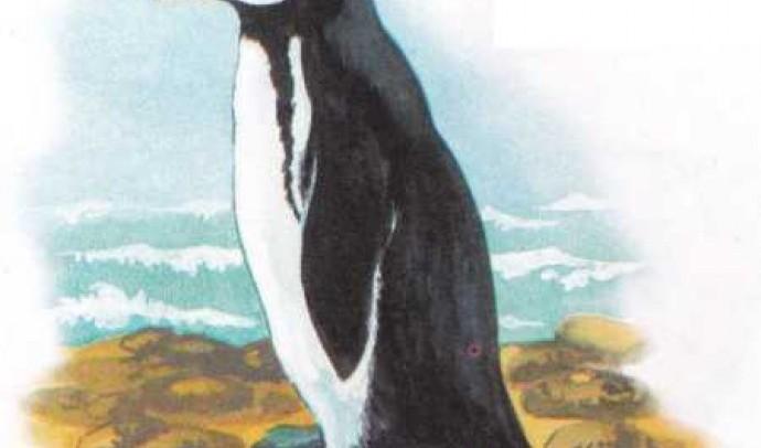 Жовтоокий пінгвін