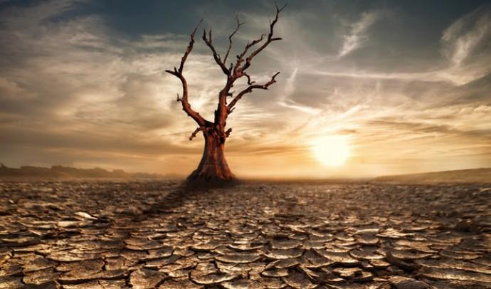 Що таке засуха?