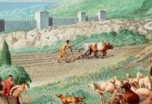 Характерні риси занять населення і розвитку господарства в Китаї