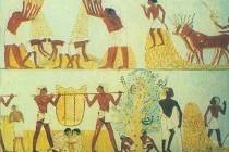 Заняття населення Давнього Єгипту
