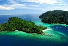 Борнео – місце проживання «лісової людини»