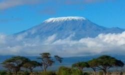 Засніжена шапка Кіліманджаро (гора)