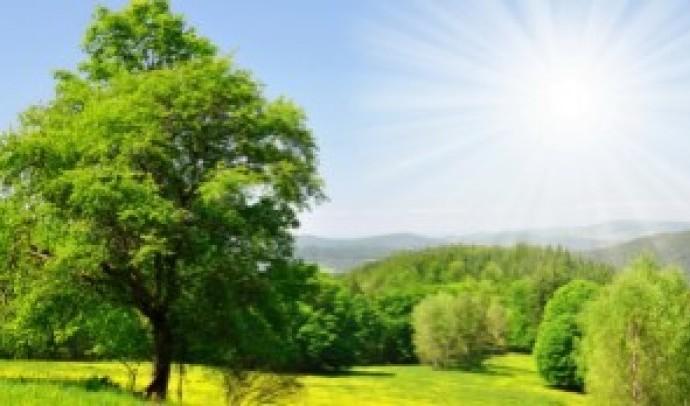 Літо в культурній спадщині українського народу