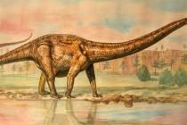 Маминьчизавр