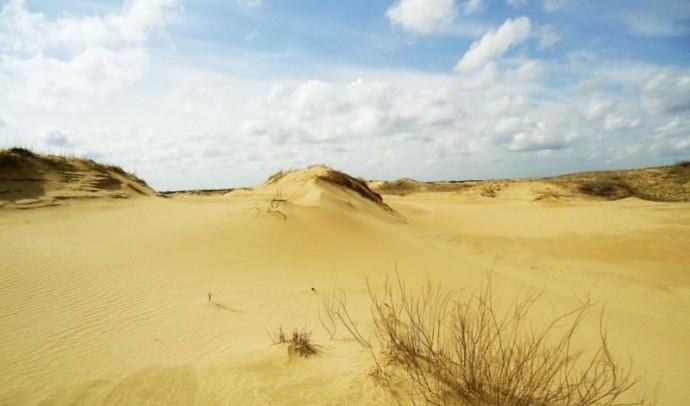 Олешківські піски (Україна)