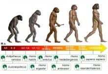 Основні етапи розвитку людства
