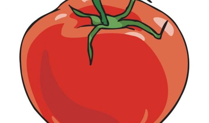 Звідки ми знаємо про помідор?