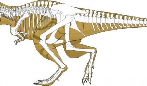 Міць тиранозавра