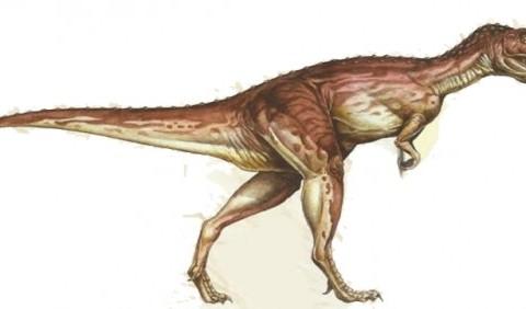 Цератозавр («рогатий ящір»)