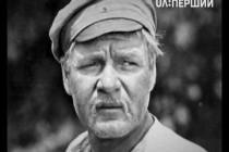 Віктор Мірошниченко (відео)